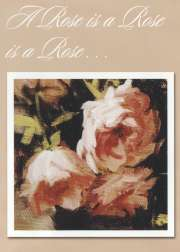 Helen Van Wyk . Com A Rose is a Rose